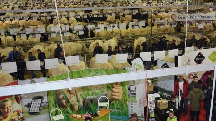 Le festival du bœuf Charolais se déroulerai les 1er et 2 décembre 2018 à Charolles (©Festival du bœuf Charolais)