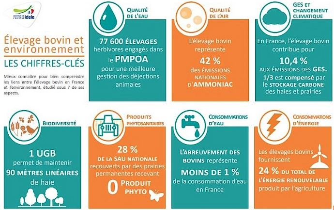 Élevage bovin et environnement: les chiffres-clés (©Idele)
