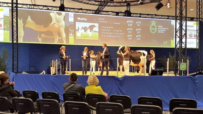 Le TopTierTreff est un événement qui consiste à présenter le meilleur de la génétique allemande et internationale avec quelques exemples d'animaux par race. Ce n'est pas un concours. (©Terre-net-média)