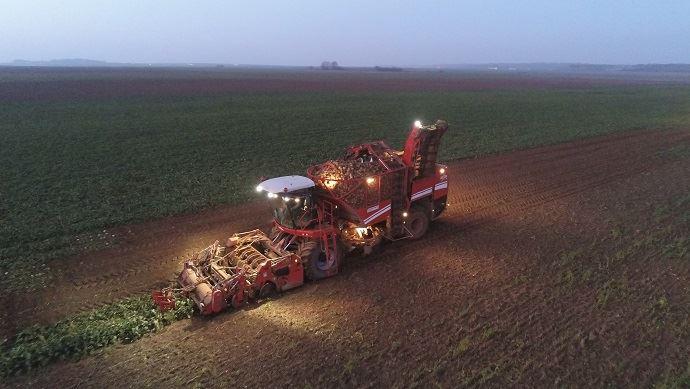 Les planteurs de betteraves «devraient perdre 400€/ha» selon le président de la CGB Eric Lainé. (©@FarmerSeb)