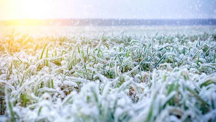 Avec 90% de chance de se former cet hiver, le phénomène El Niño pourrait entraîner une période froide et neigeuse en janvier et février 2019 sur l'Hexagone. (©Fotolia/Nordoden)