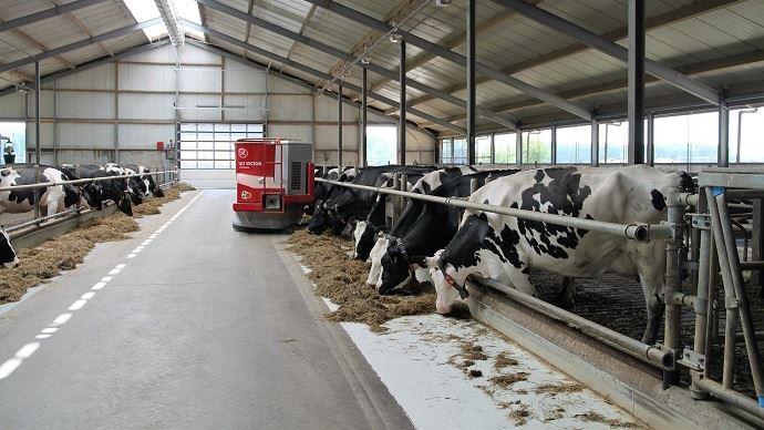 La production laitière a baissé de 3 à 5% entre août et décembre 2018 en Europe.(©pixabay)