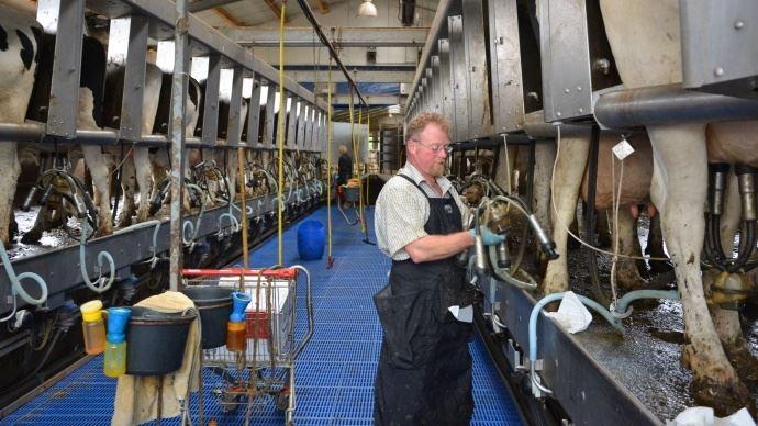 Selon le Cniel, la production laitière française poursuit son recul en cette fin d'année 2018. (©TNC)