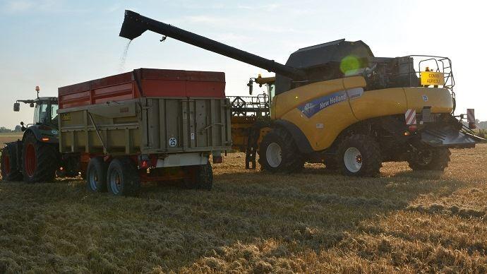 Les cours du blé devrait, selon la Commission européenne, se maintenir à un niveau stable autour de 170€/t à l'horizon 2030. (©TNC)