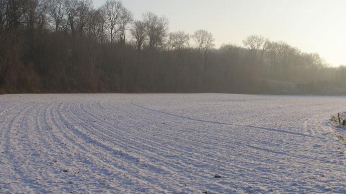 MeteoNews prévoit plusieurs petits épisodes neigeux sur le Nord de la France et les massifs d'ici la fin du mois de janvier. (©TNC)