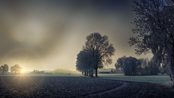 Un mois d'hiver typique sur le pays, bien que légèrement plus froid qu'habituellement, un peu plus sec et un chouia plus sombre, selon MeteoNews. (©Pixabay)