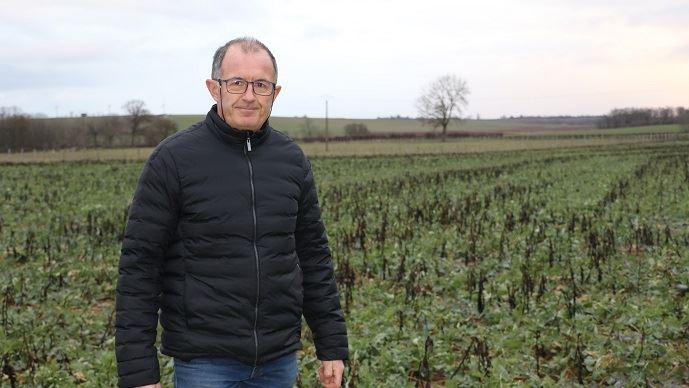 Dominique Picoche a mis en place la technique du colza associé depuis quatre ans sur son exploitation, et en est globalement très satisfait. En cette fin janvier, toutes les féveroles sont détruites grâce au gel. (©TNC)