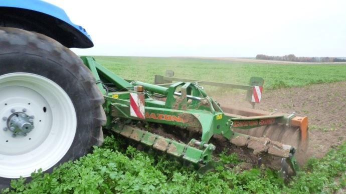 Arvalis-Institut du végétal rappelle qu'au-delà du 15 mars, un couvert encore en place risque de pénaliser le maïs qui suit. (©TNC)