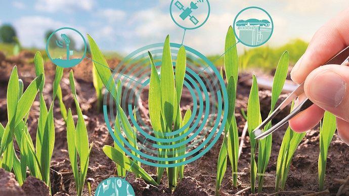 Une nouvelle étape dans le raisonnement de la fertilisation azotée est en préparation. (©TNC)