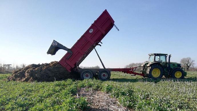 Pour valoriser pleinement l'effet azote des fumiers de bovins, il est conseillé de les épandre 1,5 à 2 mois avant le semis. (©Bertrand Chevalier)