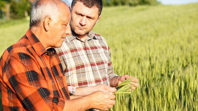 «Dans les dix ans à venir, un paysan sur deux va quitter le métier d'agriculteur, un sur trois dans les cinq ans», selon Raymond Vial. (©PointImages,Fotolia)