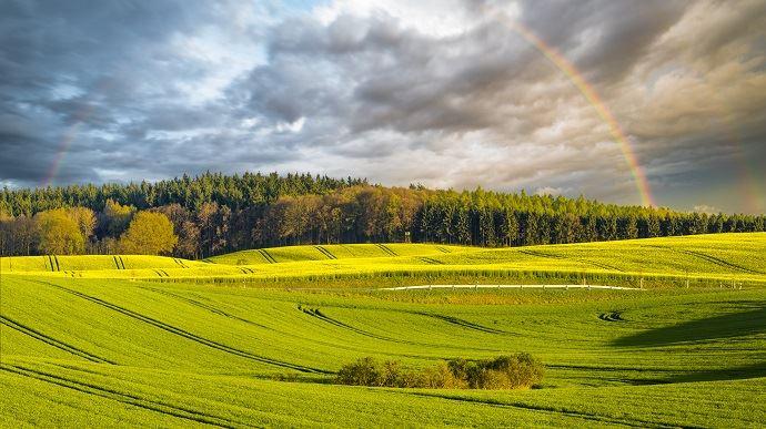 Le gouvernement réaffirme sa volonté ferme d'atteindre les objectifs de réduction des phytos de moitié d'ici à 2025 et de sortie du glyphosate pour une majorité des usages d'ici fin 2020. (©Mike Mareen/Fotolia)