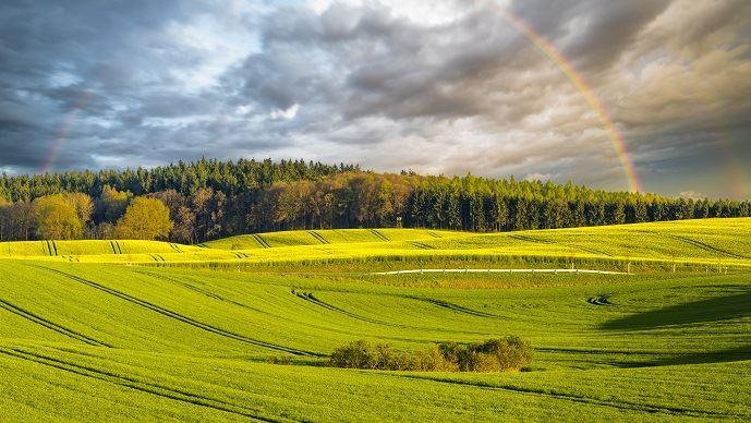Face aux évolutions du climat, les agriculteurs s'adaptent. (©Mike Mareen/Fotolia)