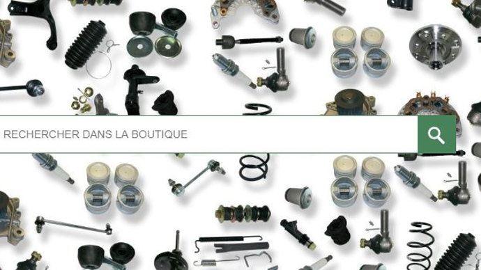 Bartsparts propose 350000 références de pièces disponibles en ligne. (©Bartsparts)