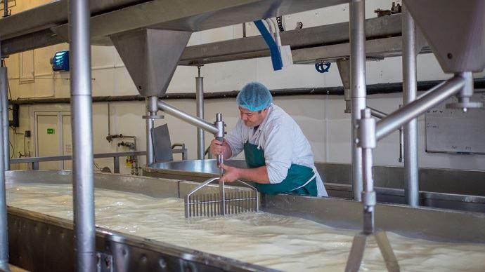 Les investissements à l'étranger des principaux transformateurs laitiers français ont été davantage orientés vers la production de fromages. (©Fotolia)