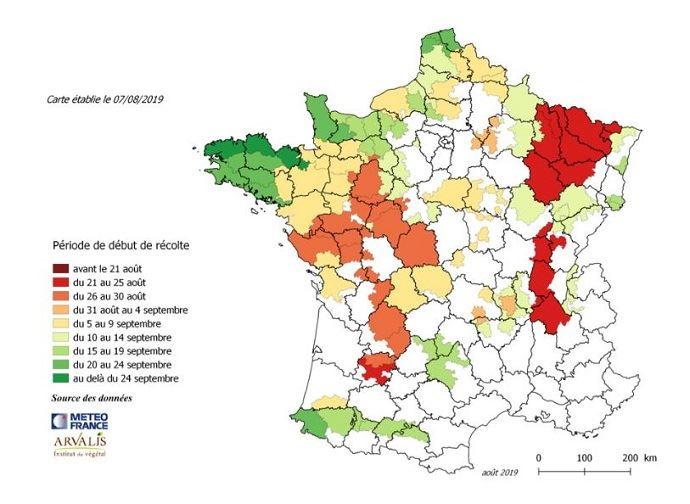 Estimation de la date de début de récolte de maïs fourrage par région – au 7 août 2018. (©Arvalis-Institut du végétal)