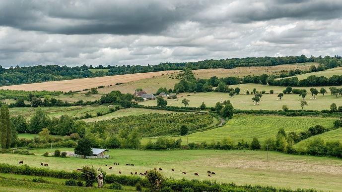 Retrouvez tous les prix du foncier agricole 2018 en Bretagne.(©Pixabay)