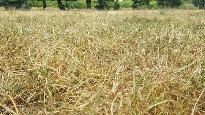 Didier Guillaume a décidé d'exonérer les agriculteurs de taxe foncière sur les propriétés non bâties.(©TNC)