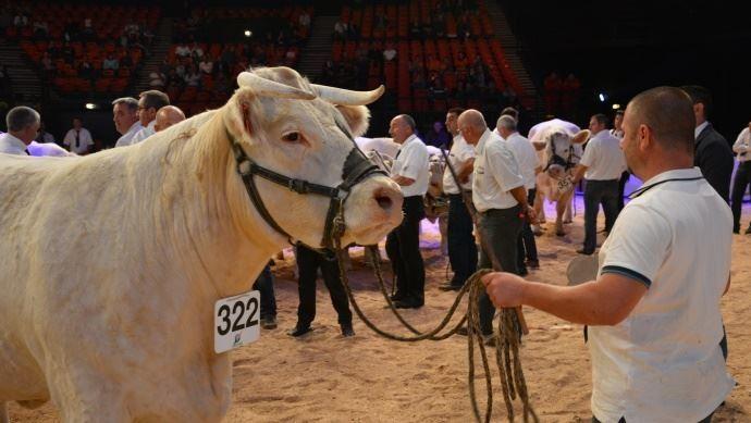 Le Sommet de l'élevage ouvre ses portes mercredi près de Clermont-Ferrand. (©TNC)