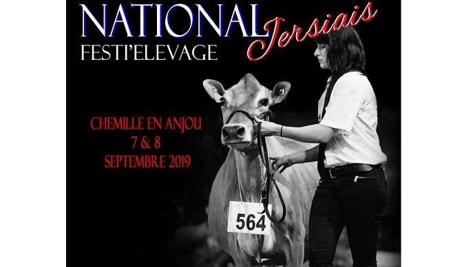 Rendez-vous au Festi'Elevage les 7 et 8 septembre 2019 pour le concours national Jersiais. (©Jersiaise France)