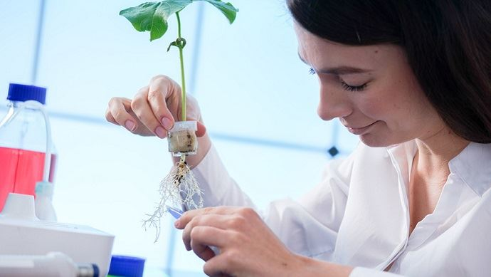 L'enseignement agricole accorde une large place aux enseignements concrets et à la conduite d'expérimentations et de projets divers. (©Science Photo, Fotolia)
