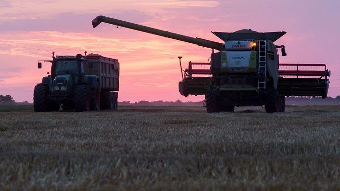 La France a enregistré, en 2019, sa deuxième plus grosse récolte de blé tendre, estimée à 39,5 Mt, contre 40,5 Mt, le record enregistré en 2015. (©Nadège PETIT @agri_zoom)