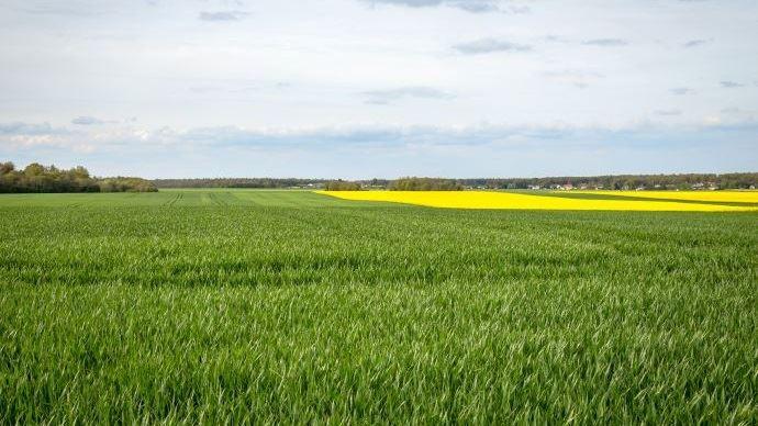La protection du foncier agricole, un enjeu majeur pour JA. (©Nadège Petit @Agrizoom)