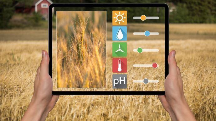 Avec une station météo à la ferme, le modèle maladies généré par l'OAD est plus fiable, car basé sur des données de proximité.(©Fotolia)