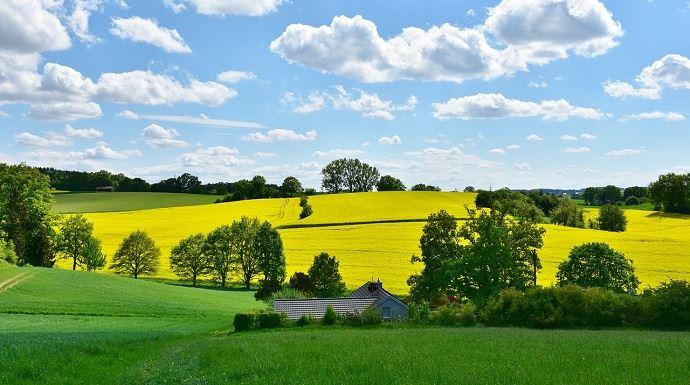 Les trois axes du projet des chambres d'agriculture pour les années à venir: accompagner les agriculteurs vers la transition agro-écologique; créer plus de valeur dans les territoires; faire dialoguer agriculture et société.(©Pixabay)