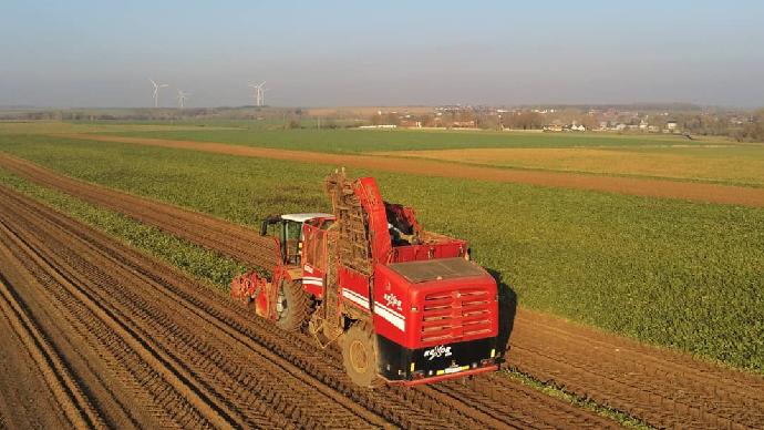 La production de betteraves sucrières est attendue à 36,9 Mt pour la campagne 2019/20.(©@FarmerSeb)