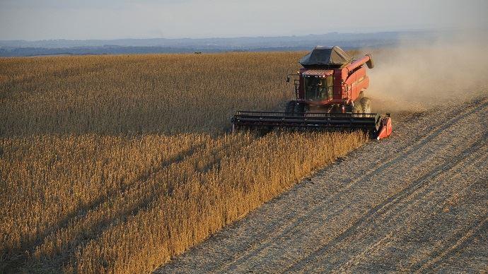 La Chine a relevé les droits de douanes sur le soja américain de 3 à 33% en l'espace d'un an. (©Pixabay)