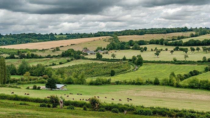 L'agriculture émet en France 16,4% des gaz à effet de serre mais elle permet aussi de séquestrer le carbone dans ses sols. (©Pixabay)