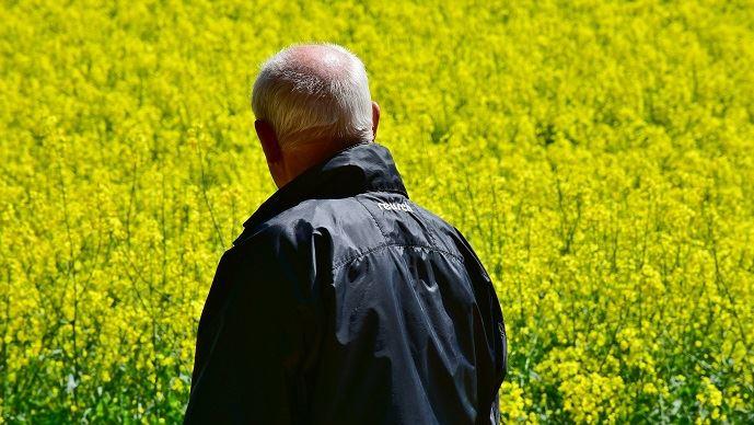 Le Gouvernement avait bloqué la proposition de loi de revalorisation des retraites agricoles en mars 2018, promettant qu'elle serait négociée dans le cadre plus large de la réforme des retraites. (©TNC)