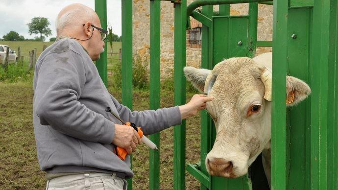 Dans certaines zones agricoles, il est de plus en plus difficile de trouver un vétérinaire. (©TNC)
