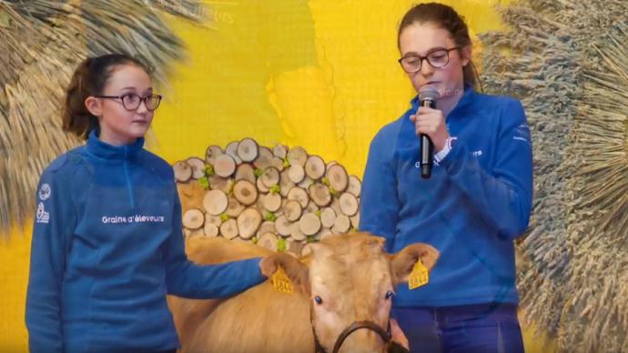 Les jeunes de l'association Graines d'éleveurs du Vercors (à droite sa présidente, Pauline Guillot) veulent relancer la race bovine Villard-de-Lans, qui a failli disparaître. (©Youtube)