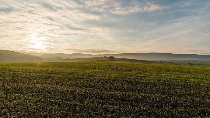 Cet hiver a été marqué par un record de douceur. Il a été bien arrosé surtout au nord et plutôt lumineux. (©Pixabay)