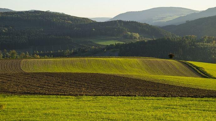 Sur des terres classées spécifiquement, un fermier doit respecter les engagements afférents à ce classement. (©TNC)