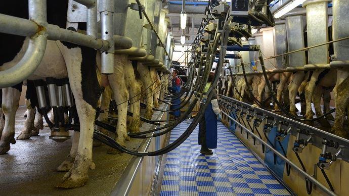40% de la collecte laitière française est destinée à l'export. (©TNC)