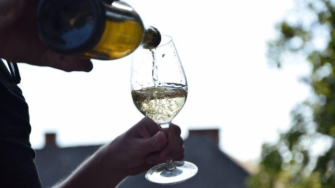 Des domaines viticoles misent sur les dégustations virtuelles pour limiter leurs pertes. (©Pixabay)