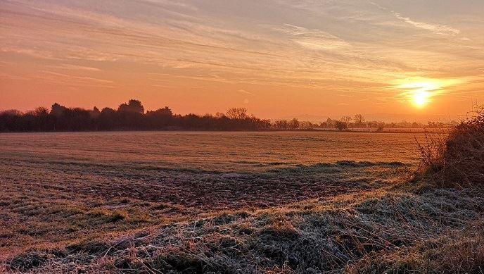 Les gelées tardives vont-elles avoir lieu cette année lors des Saints de Glace? (©Pixabay)