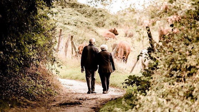 La revalorisation des retraites agricoles a été validée définitivement par le Parlement. (©Pixabay)