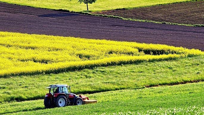 Un rapport du Sénat demande une enveloppe «d'au moins un milliard d'euros» pour la survie des exploitations agricoles.(©Pixabay)