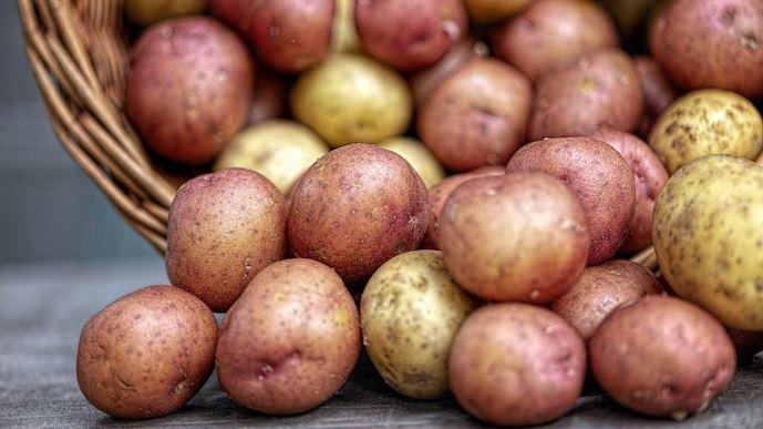 En moyenne sur avril-mai, le prix du kilo de pommes de terre en GMS s'est élevé à 1,14€/kg: en baisse de 11% comparé à 2019. (©Pixabay)