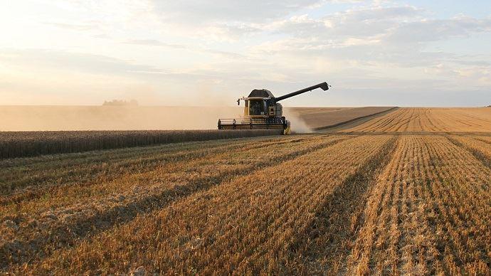 Les chiffres sur la production mondiale de blé sont revus à la baisse, ce qui fait grimper le prix de la céréale. (©CC)