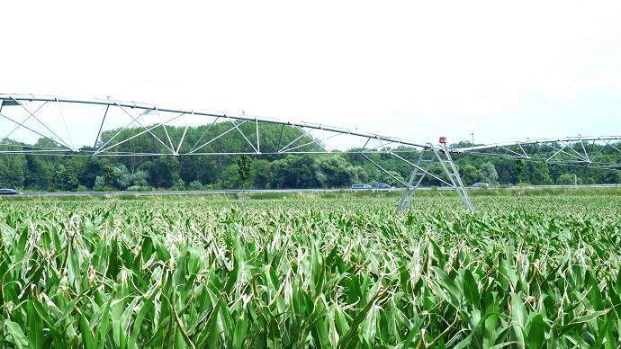 Moins de 5% de la surface agricole utile française est irriguée.(©TNC)