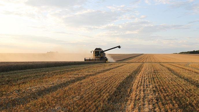Retrouvez les estimations de rendements et de surfaces en blé tendre mises à jour pour la récolte 2020. (©Pixabay)