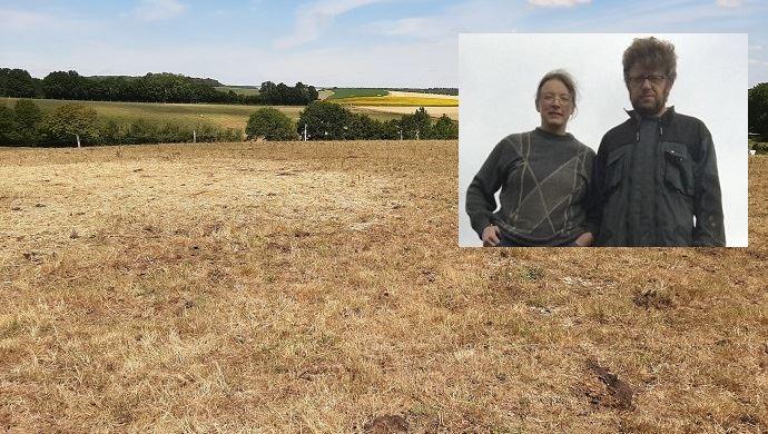 Les prairies de Vincent Delargillière et Claire lors de cet été 2020. (©Vincent Delargillière)