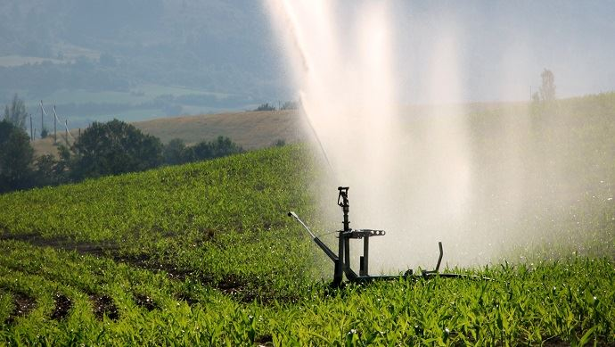 Irrigation d'un champ de maïs dans la vallée de la Méouge (Drôme).(©C. Tailleux)