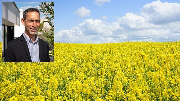 À 43 ans, Gilles Robillard succède à Sébastien Windsor, en tant que président de Terres Inovia. (©Terres Inovia/Pixabay)