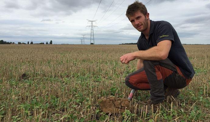Pour cette campagne 2020/2021, Jean-Christophe Leicher a associé son colza, semé au 14 août, avec lin, tournesol, sarrasin, féverole et vesce. (©TNC)